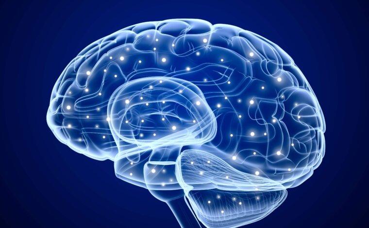 22 طريقة لتقوية الذاكرة والتركيز ومحاربة النسيان